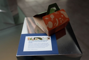 Best-of-the-Leftovers Box – REFRESH Doggy Bag Design Contest